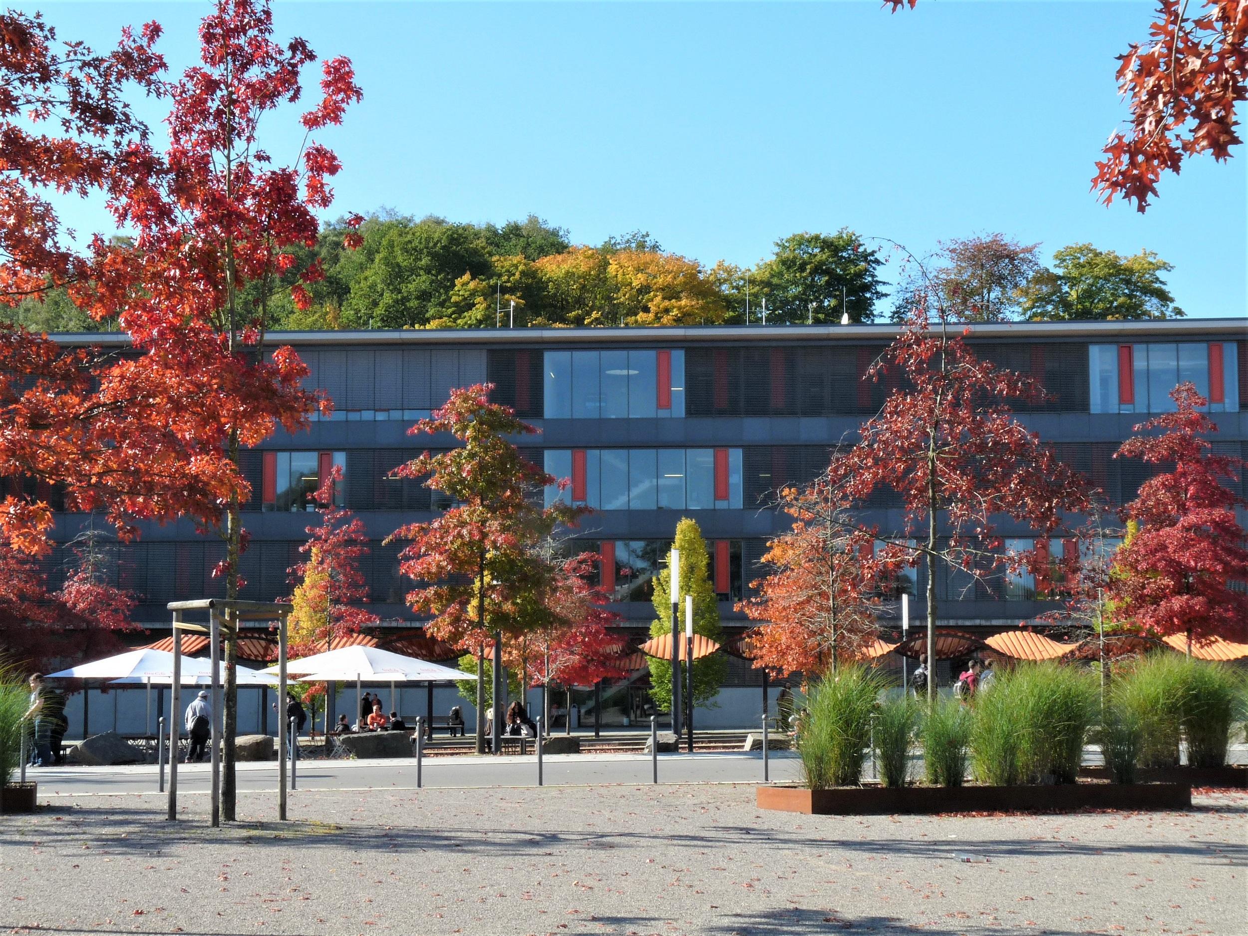 Technische Hochschule Köln, Campus Gummersbach